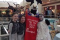 Charleston Town Center's Chick Fil-A  co-hosting The Snow Queen party with RCYBE